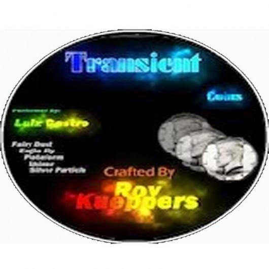 DVD Transient Coins