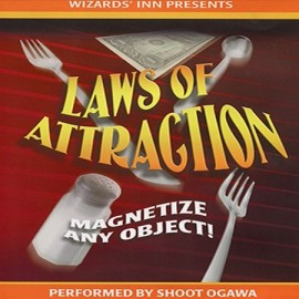 Laws of Attraction by Shoot Ogawa