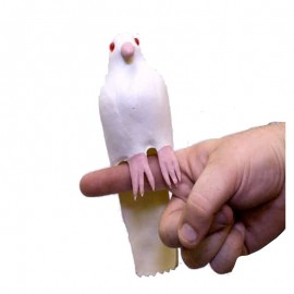 Latex Dove