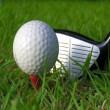 Trick golf ball