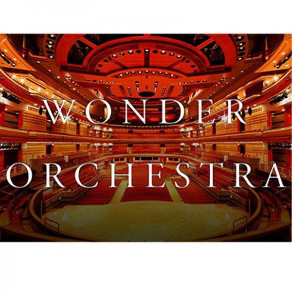 Wonder Orchestra Violin