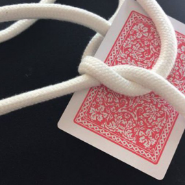 Card on Rope + Video Online by Dario Hueta