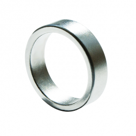 Pk Ring Silver Magnet (Flat) 20mm