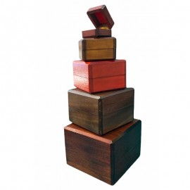 Cajas nido Profesionales (Arsene Lupin) 5 Cajas