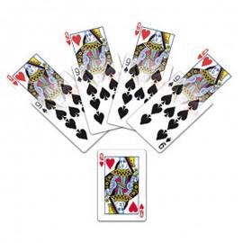 Wild Cards + Vídeo Premium